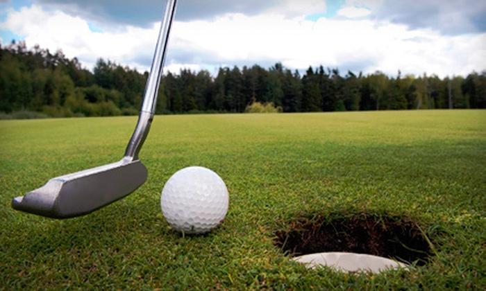 CityGolf Walpole and CityGolf Boston - Multiple Locations: Golf-Swing Analysis, Simulator Play, or Both at CityGolf Walpole and CityGolf Boston (Up to 60% Off)