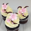 35% Off Bakery Decorating Classes
