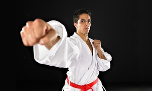 Ultimate Leadership Martial Arts & TaeKwonDo: One Month of Classes at Ultimate Leadership Martial Arts & TaeKwonDo (Up to 71% Off). Four Options Available.