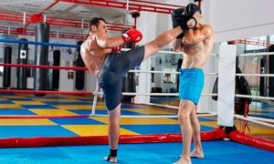 REC FIGHT: 1, 2 ou 3 meses de artes marciais + matrícula na Rec Fight – Boa Viagem