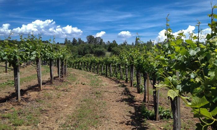 Jodar Vineyards - Placerville: Wine Tastings for 2, 4, or 6–10 at Jodar Vineyards (Up to 60% Off)
