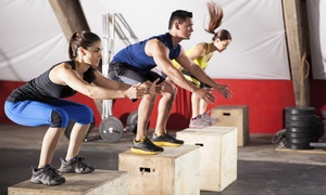 Jadablitz Training: Gym Memberships or Boot-Camp Classes at Jadablitz Training (Up to 52% Off). Four Options Available.