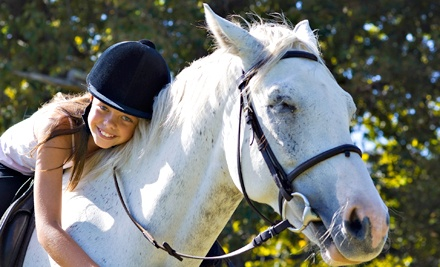 One, Three, or Five 60-Minute Horseback-Riding Lessons at Blue Point Stables (Up to 56% Off)