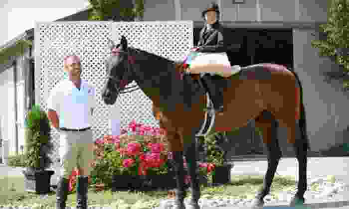 High Standard Equestrians - Wilton: $99 for Four Private One-Hour Horseback-Riding Lessons at High Standard Equestrians in Wilton ($240 Value)