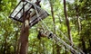 Spring Mountain Adventures - East End South: Zipline Canopy Tour for One or Two at Spring Mountain Adventures (Up to 53% Off). Four Options Available.