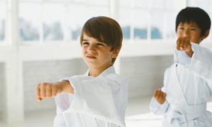 East West Team Martial Arts Philly: 10 or 20 Children's or Adult Martial Arts Classes with a Uniform at East West Team Martial Arts Philly (Up to 81% Off)