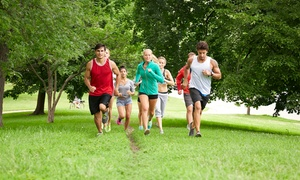 Boot Camp Challenge : $39 for One 4-Week Boot Camp Challenge ($160 Value)