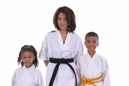 $65 for $210 Worth of Martial-Arts Lessons — Family Martial Arts