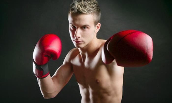 Al Irish's Shut Up and Box - Royal Oak: 10 Fitness Classes or Three or Six Months of Classes at Al Irish's Shut Up and Box in Royal Oak (Up to 71% Off)