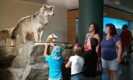 Visit for Two Adults or a Family of Four to the The Mashantucket Pequot Museum (Up to 53% Off)