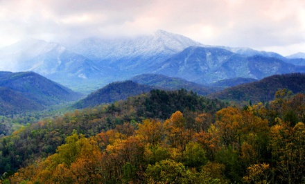 1, 2, or 5 Nights in a Bough or Branch Room or Honeymoon Cabin for Two at Evergreen Cottage Inn in Pigeon Forge, TN