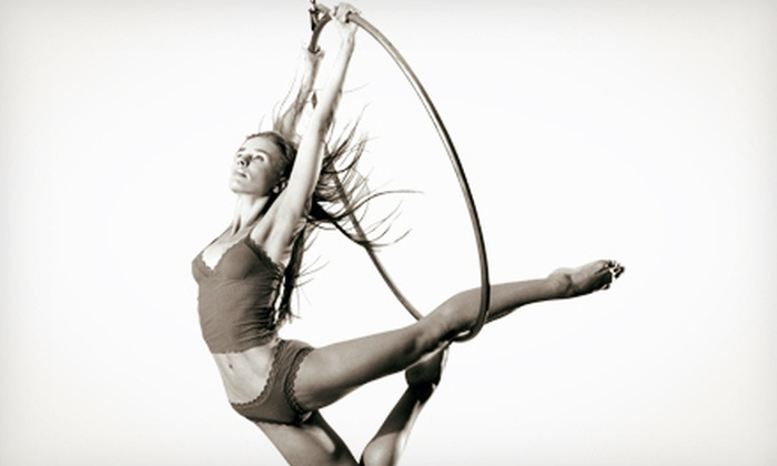 AntiGravity NTF - Kissimmee: One, Four, or Eight Aerial, Fitness, or Acrobatic Classes at Antigravity NTF (Up to 78% Off)