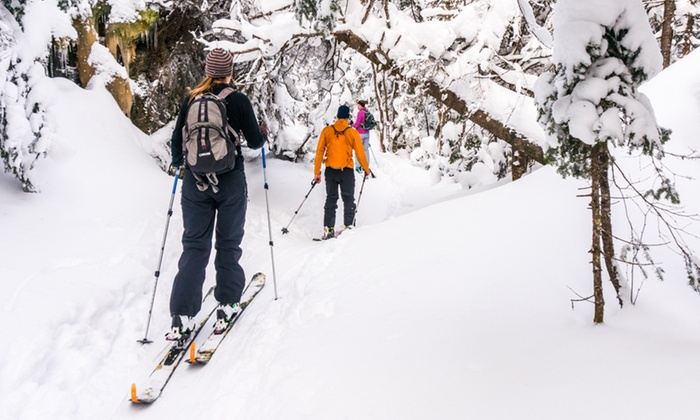 Catamount Trail Association - Vermont: Individual or Family Season Membership to Catamount Trail Association (Up to 43% Off)