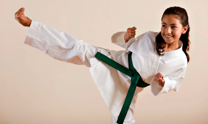 Master Chong's Tae Kwon Do Summer Camp - Lancaster/Depew Location: One Week of Tae Kwon Do Summer Camp at World Class Tae Kwon Do Centers (Up to 52% Off). Nine Sessions Available.