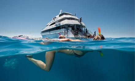 Cairns: $85.50 for 1 Child or $157.50 for 1 Adult for a Full Day Reef Cruise and Lunch with Down Under Cruise and Dive