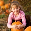 40% Off Admission to Dream Field Farms and Pumpkin Patch