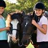 Half Off Pony-Riding Party