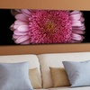 Gallery-Wrapped Flowers and Landscapes Prints