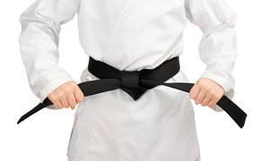 Lehigh Valley Shihou-ken Karate: One or Two Months of Unlimited Classes from Lehigh Valley Shihou-ken Karate (Up to 64% Off)
