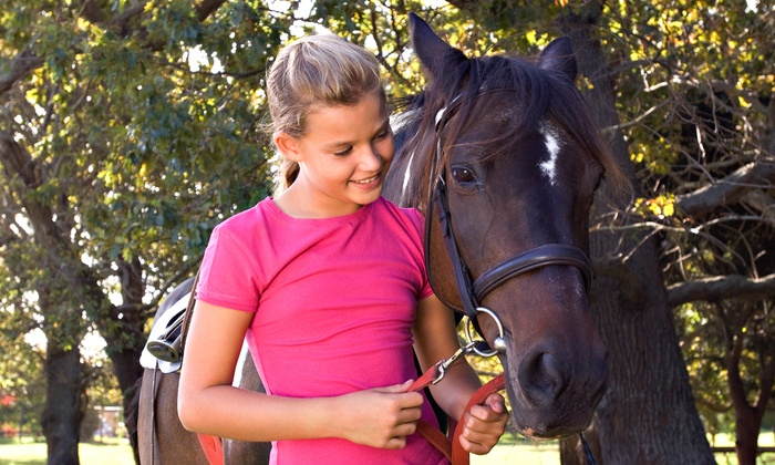 Luton Training Center - Williamston: Two 45-Minute Private Horseback-Riding Lessons for One or Two at Luton Training Center (Up to 51% Off)