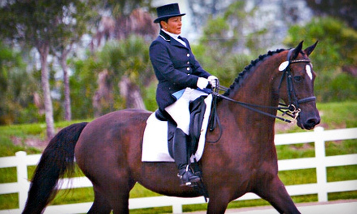 Lazy Meadows Farm - Plantation: One, Two, or Three 30-Minute Private Riding Lessons at Lazy Meadows Farm (Up to 54% Off)