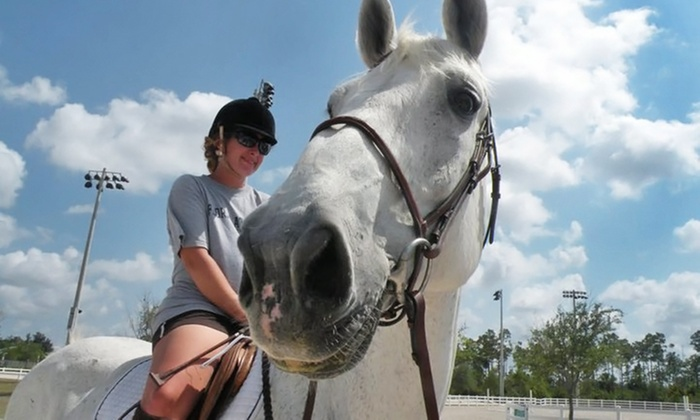 Lazy Acres Farms - Amold Heights: 60-Minute Semi-Private Horseback-Riding Lessons at Lazy Acres Farms (Up to 60% Off). Two Options Available.