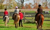 Stonehouse Farm Riding School & Livery Stables - Meriden: One-Hour Children's Horse Riding Lesson for £13 at Stonehouse Farm Riding School and Livery Stables (35% Off)