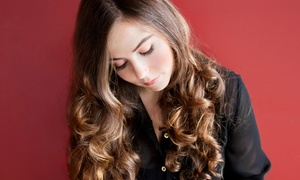 Anthony Robert Salon: Haircut and Wash with Optional Partial Highlights or Single-Process Color at Anthony Robert Salon (Up to 66% Off)