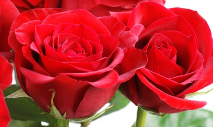 One or Two Dozen Long-Stemmed Roses or $20 for $40 Worth of In-Store Flowers at Cleveland Florist