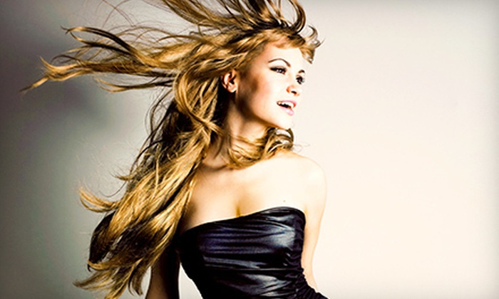 The Style Bar - Fort Wayne: Haircut and Conditioning Treatment with Optional Partial or Full Highlights at The Style Bar (Up to 62% Off)