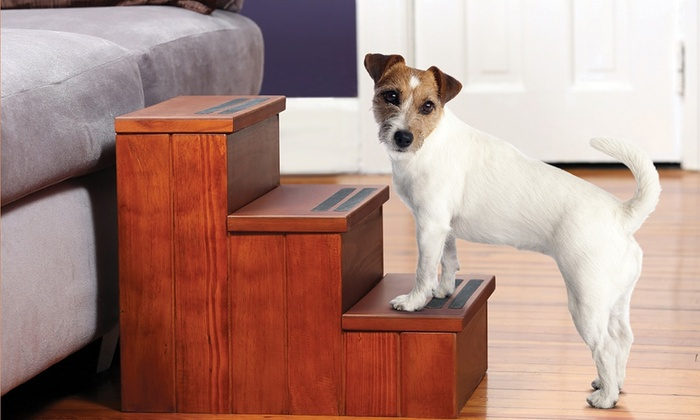 Wooden Pet Steps with Storage: Wooden Pet Steps with Storage. Free Shipping and Returns.