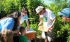 Azure B LLC - 10, Marbury: Basic Beekeeping Class for One or Two at Azure B LLC (Up to 57% Off)