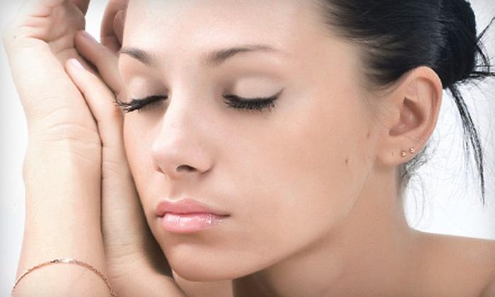 Lesya and Helena Skincare Professionals - Arlington Heights: Facial Treatments at Lesya and Helena Skincare Professionals in Arlington Heights (Up to 56% Off). Four Options Available.
