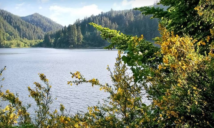 Loon Lake Lodge & RV Resort - Oregon: Two-Night Stay for Up to Four at Loon Lake Lodge & RV Resort in Reedsport, OR