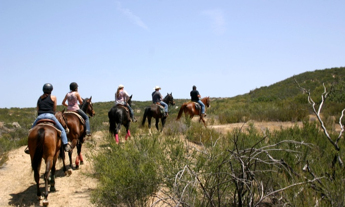 Vin Hesten Trail Adventures - Roripaugh Ranch: $69 for a Horseback-Riding Lesson and Trail Ride from Vin Hesten Trail Adventures ($119 Value)