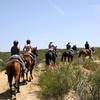 42% Off Horseback-Riding Excursion