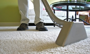 American Carpet Masters: $162 for Carpet Cleaning for Five Rooms at American Carpet Masters ($350 Value)