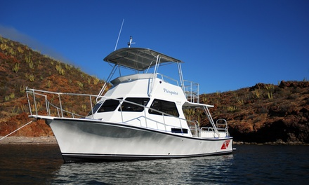 $99 for Two Morning SCUBA Dives for Two from San Carlos Dive Boats ($198 Value)