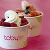 $20 Worth of Yogurt at TCBY Ann Arbor