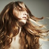 Fantastic Sams – Up to 53% Off Hair Services