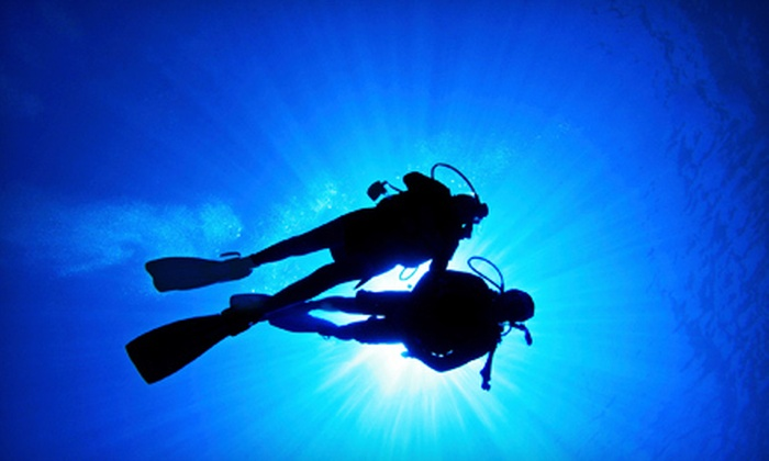 Aqua Trek Sports - Arlington: Discover Scuba Class for One or Two or Diver-Certification Course at Aqua Trek Sports in Arlington (Up to 62% Off)