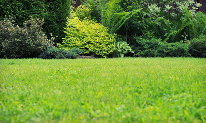 Parr Mowing - Amarillo: One-, Four-, or Six-Visit Lawn-Care Package with Mowing, and Edging from Parr Mowing (Up to 53% Off)