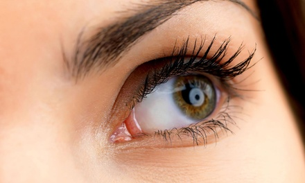 One Full Set of Eyelash Extensions with Optional ThreeWeek TouchUp at Lashes & More (Up to 57% Off)