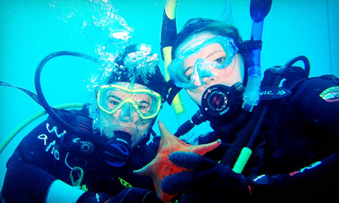 Aquanautics Dive - Sylmar: $299 for a PADI National Geographic Open-Water Scuba Certification at Aquanautics Dive ($625 Value)