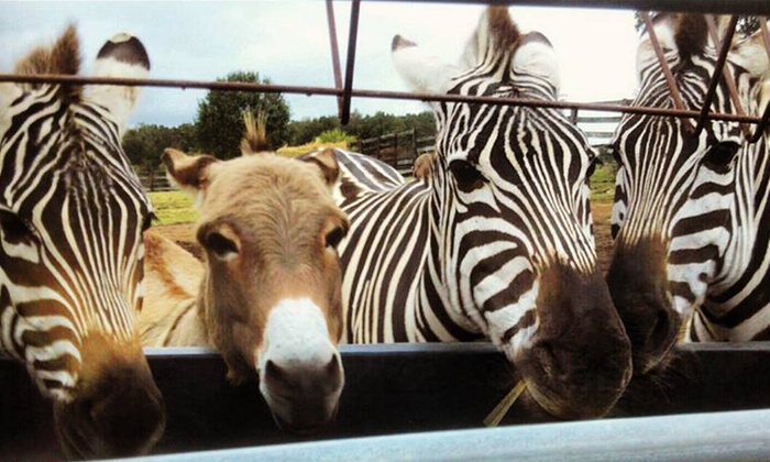 Why Not an American Ark Equestrian Park and Two by Two Petting Zoo - Monroe: Tour at Why Not an American Ark Equestrian Park and Two by Two Petting Zoo (Up to 45% Off). Two Options Available