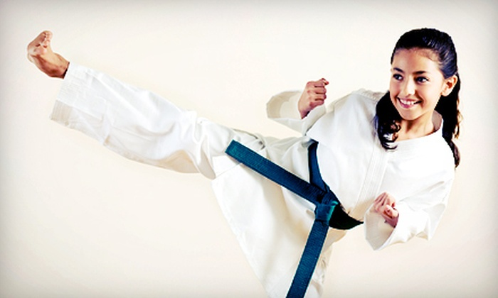 Wiseman's Martial Arts - Mt. Pearl: One Month of Kenpo Karate Classes for an Individual or Parent and Child at Wiseman's Martial Arts (Up to 71% Off)
