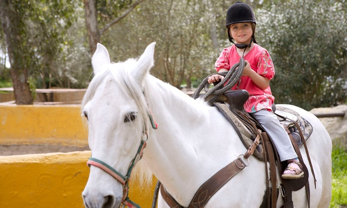 Five Star Ranch - Campbellville: Trail Ride for Two, Birthday Party for Up to Eight, One-Week Summer Camp at Five Star Ranch (Up to 51% Off)