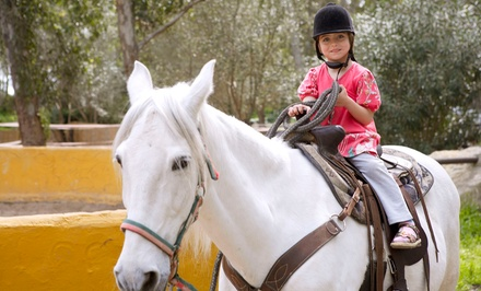 Trail Ride for Two, Birthday Party for Up to Eight, One-Week Summer Camp at Five Star Ranch (Up to 51% Off)