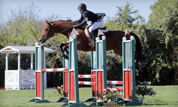 Bel Canto Farms - Dripping Springs-Wimberley: One, Four, or Six Private Horseback-Riding Lessons at Bel Canto Farms (Up to 71% Off)