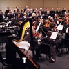 Lima Symphony Orchestra – Up to 67% Off Concert